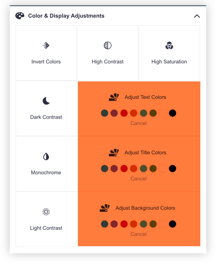 Accessibe-Widget-Adjust-Colors-Options