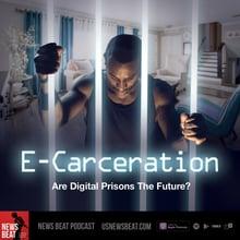 E-Carceration: Are Digital Prisons The Future?