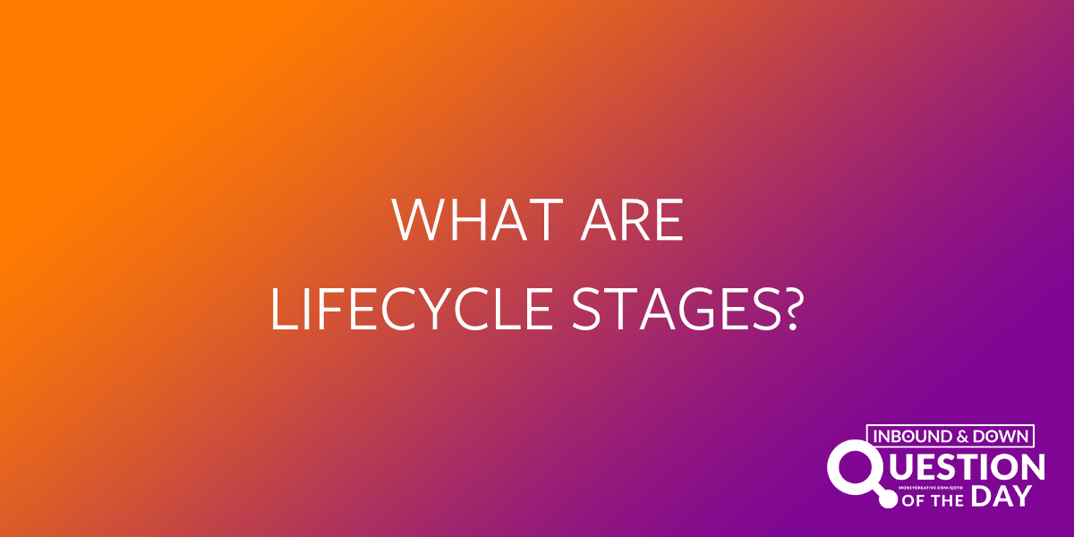 What Are Lifecycle Stages